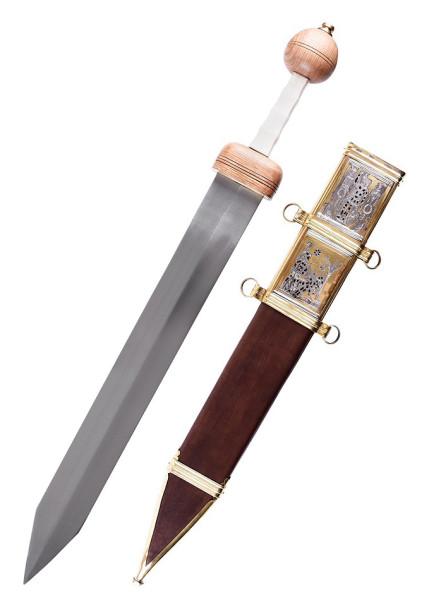Gladius Typ Pompeji Schwert mit Scheide